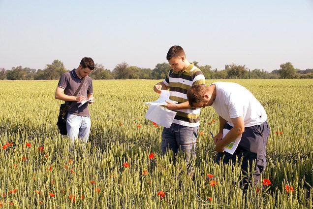 Điều kiện đi du học ngành nông nghiệp tại Úc ?