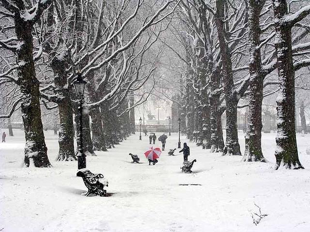 Mùa đông ở Nhật Bản bạn sẽ được thấy tuyết rơi