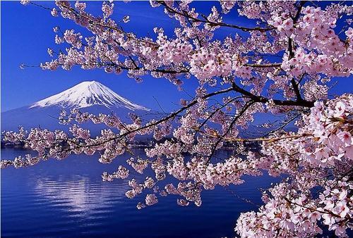 Thời tiết ở Nhật Bản ra sao ?