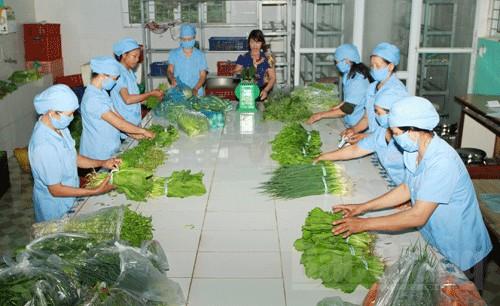 Tuyển 09 Nữ làm Chế biến thực phẩm