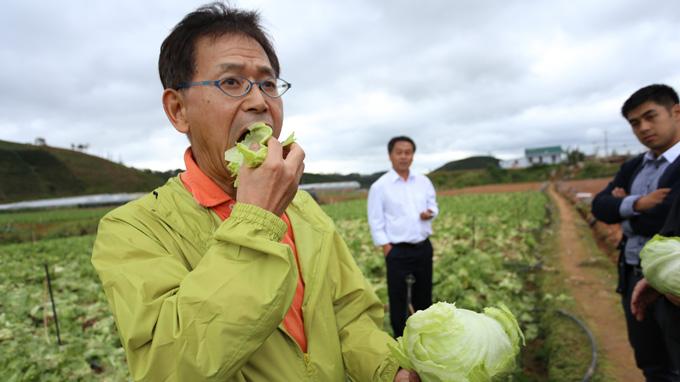 Chế biến rau củ quả sạch ở Nhật Bản cực kỳ phát triển