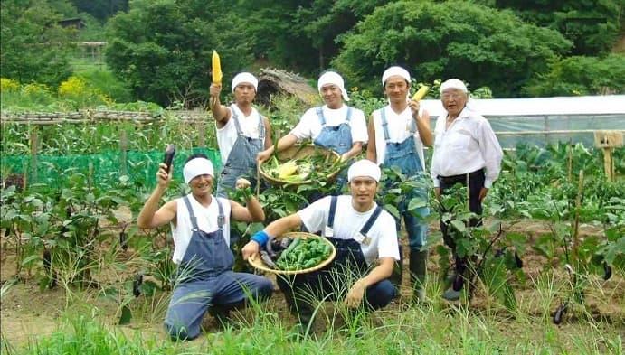 Thực tế ngành nông nghiệp Nhật Bản không vất như nhiều người nghĩ
