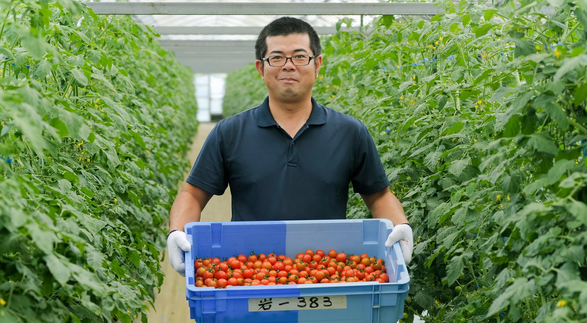 Nguồn nhân lực trẻ tại Nhật không mấy thích thú với công việc làm nông nghiệp