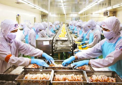Tuyển gấp 30 nữ đi đơn hàng Chế biến thủy hải sản tại Nhật Bản
