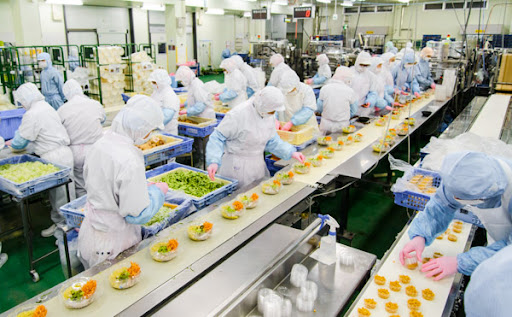 đơn hàng tokutei thực phẩm nhận trái ngành cho nợ chứng chỉ