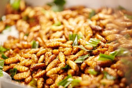 Ấu trùng ong là món ăn được ưa thích trên bàn nhậu