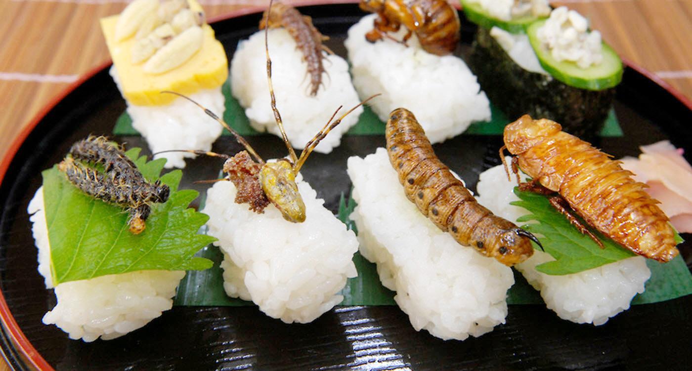 Chắc hẳn bạn sẽ khóc thét khi được mời thưởng thức những cuộn sushi này